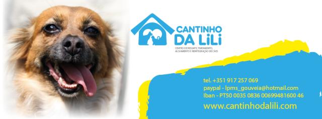 cantinhoLili1