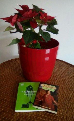 passatempo giveaway books livros