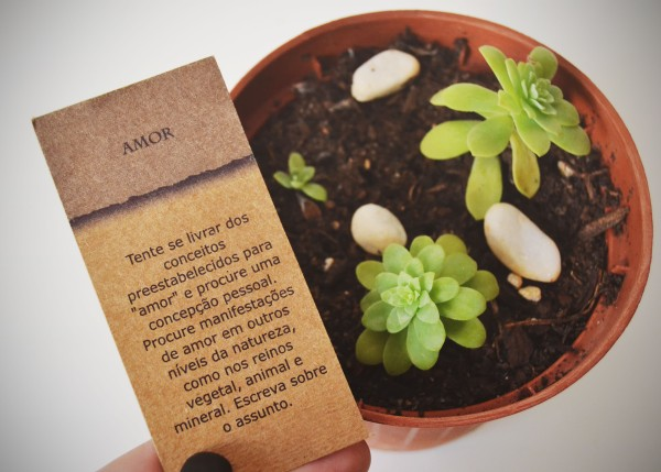 plantas-amor